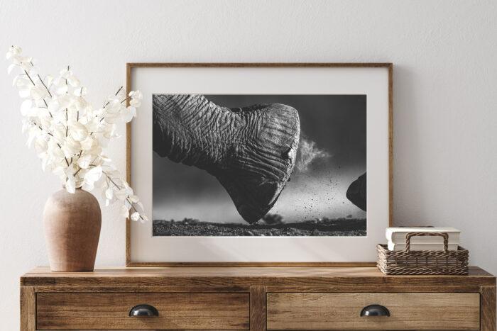 Elephant Black and White Print